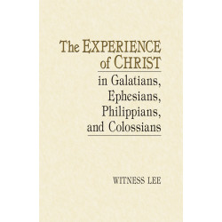 Experience of Christ in...