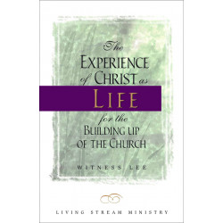 Experience of Christ as...