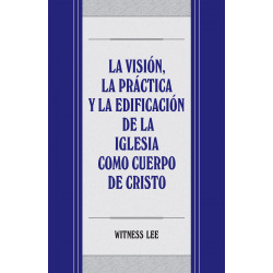 Visión, la práctica y la...